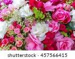 full bloom flower as a...   Shutterstock . vector #457566415