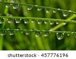 water drops on wet grass with... | Shutterstock . vector #457776196