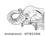hand drawn sketch of an elephant | Shutterstock .eps vector #457822306
