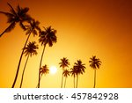 palm trees silhouettes on... | Shutterstock . vector #457842928