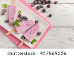 blackberry popsicle with... | Shutterstock . vector #457869256