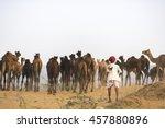 Pushkar  Rajasthan  India  ...