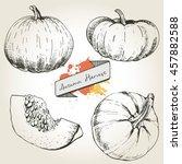 vector hand drawn set... | Shutterstock .eps vector #457882588