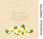 vector summer layout with... | Shutterstock .eps vector #458007556