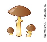 Group Of Mushroom Cep Isolated...