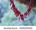 red pepper under the roof eaves | Shutterstock . vector #458339032
