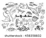 graphic sea life collection....