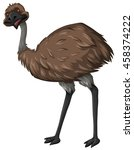 Emu Bird With Brown Feather...