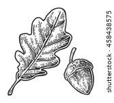 Oak Leaf And Acorn. Vector...