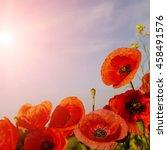 picturesque scene. closeup... | Shutterstock . vector #458491576