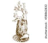Vector Antique Engraving...