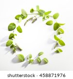 wreath made of mint leaves | Shutterstock . vector #458871976
