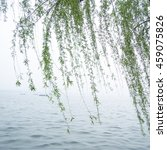 chinese willow tree in the mist ... | Shutterstock . vector #459075826