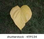 Small photo of Love Nature