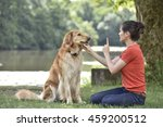 woman training dog at the park | Shutterstock . vector #459200512