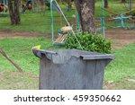 black bin in the public park. | Shutterstock . vector #459350662