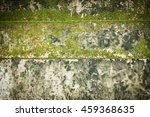Old Cement Wall With Moss  ...