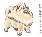 illustration of a fluffy light... | Shutterstock . vector #459461998