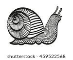 linear monochrome snail | Shutterstock .eps vector #459522568