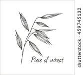 vector illustration of wheat | Shutterstock .eps vector #459745132