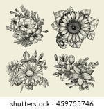 flowers. hand drawn sketch... | Shutterstock .eps vector #459755746