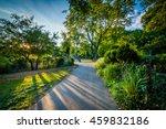 Walkway And Trees At Back Bay...