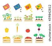 vector set of growing... | Shutterstock .eps vector #459842812