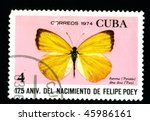 """Small photo of CUBA - CIRCA 1974: A postage stamp printed in the Cuba shows image the life of butterflies, butterfly """"Eurema (Pyrisitia) dina dina(Poey)"""", circa 1974"""