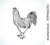 cock vector  hand draw sketch   Shutterstock .eps vector #459966256