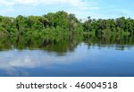 forest mirrored in a lagoon on... | Shutterstock . vector #46004518