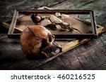 still life with human skull and ... | Shutterstock . vector #460216525