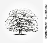 hand drawn tree | Shutterstock .eps vector #460286302