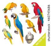 parrots birds. exotic birds set ... | Shutterstock .eps vector #460745686