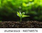 plant tree | Shutterstock . vector #460768576