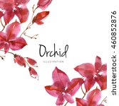 watercolor flower background....   Shutterstock . vector #460852876