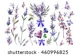 watercolor set with lavender... | Shutterstock . vector #460996825