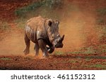 a white rhinoceros ... | Shutterstock . vector #461152312