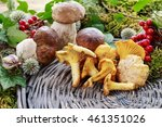 cantharellus cibarius  commonly ... | Shutterstock . vector #461351026