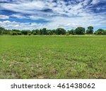 thailand rice view in... | Shutterstock . vector #461438062