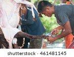 perlis  malaysia september 27 ... | Shutterstock . vector #461481145