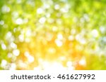 nature blur greenery bokeh leaf ... | Shutterstock . vector #461627992
