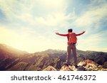 cheering successful woman... | Shutterstock . vector #461746372