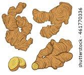 hand drawn ginger root set.... | Shutterstock .eps vector #461770336