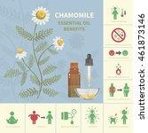 chamomile essential oil... | Shutterstock .eps vector #461873146