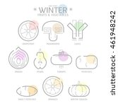 line icons winter fruits and... | Shutterstock .eps vector #461948242