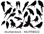vector isolated silhouette of a ... | Shutterstock .eps vector #461958022