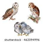 Owl Set  Watercolor