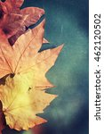 autumn background | Shutterstock . vector #462120502