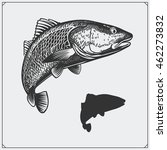 Vector Illustration Of A Fish....