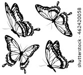 Stock vector black butterflies isolated on a white 462420058